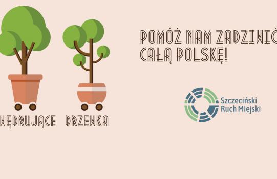 Wędrujące drzewka w Szczecinie!
